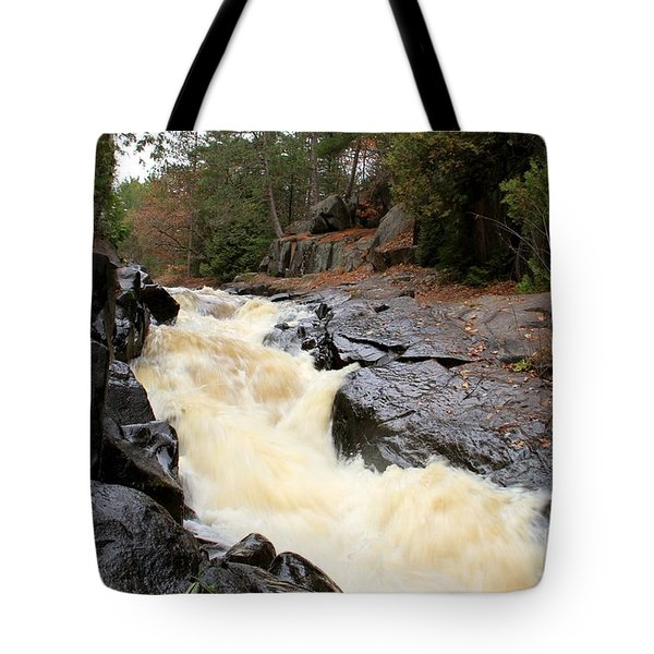 Tote Bag featuring the photograph Dave's Falls #7284 by Mark J Seefeldt