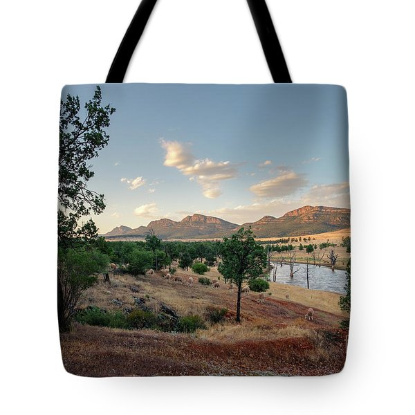Tote Bag featuring the photograph Dawn At Rawnsley Park by Ray Warren