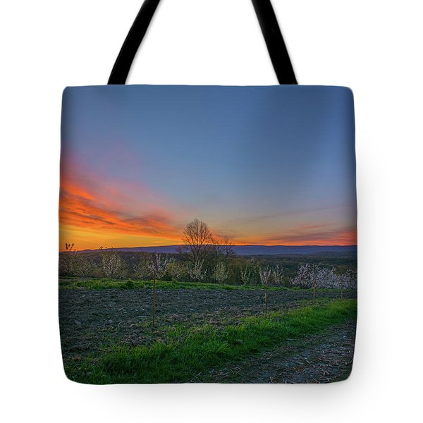 Dawn At Roe Orchards I Tote Bag by Angelo Marcialis