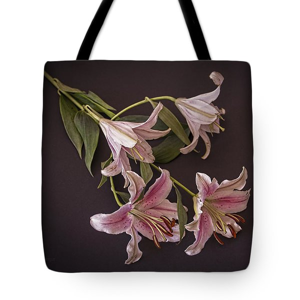 Tote Bag featuring the photograph Dawn by Elaine Teague