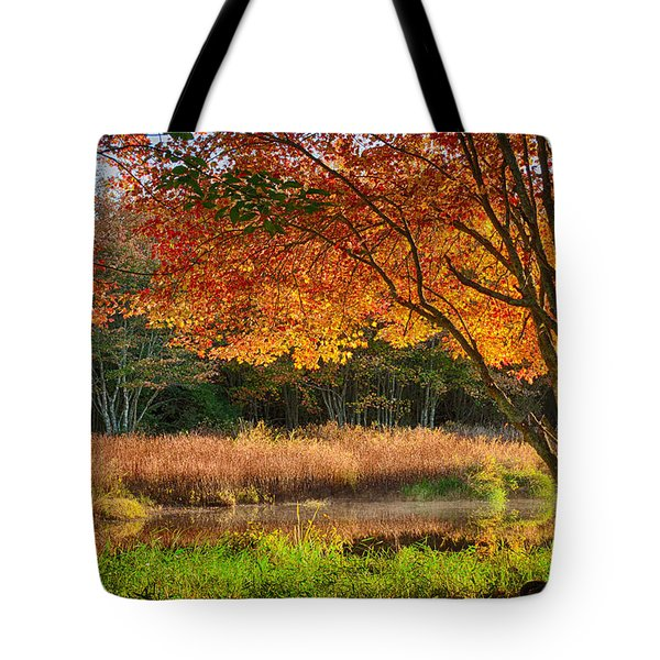 Dawn Lighting Rhode Island Fall Colors Tote Bag