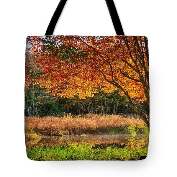 Dawn Lighting Rhode Island Fall Colors Tote Bag