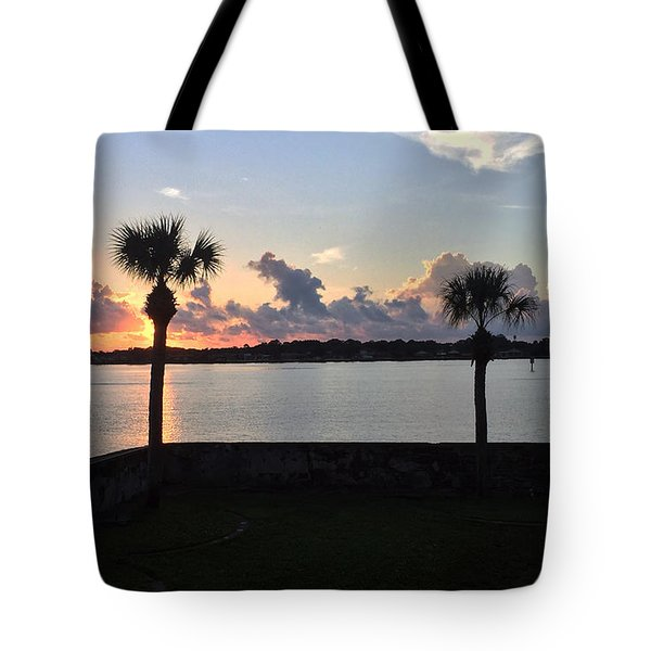 Tote Bag featuring the photograph Celebrate 450 Landing Day by LeeAnn Kendall