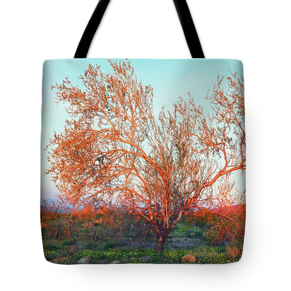Tote Bag featuring the photograph Dawn's First Light At Joshua Tree National Park by Ram Vasudev