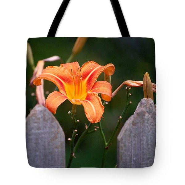 Day Lilly Fenced In Tote Bag by David Lane