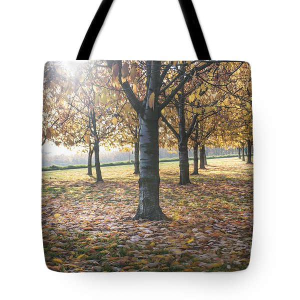 Day Of Colours Tote Bag