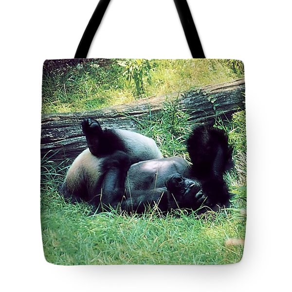 Daydream Believer Tote Bag by Jan Amiss Photography