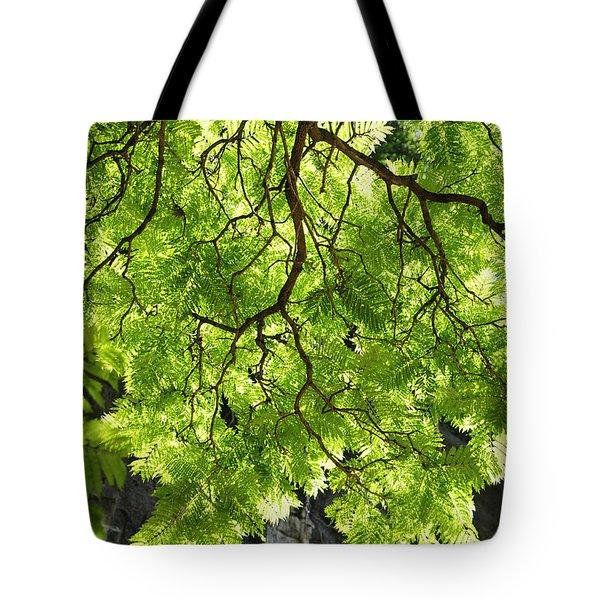 Daydream Tote Bag by Skip Hunt
