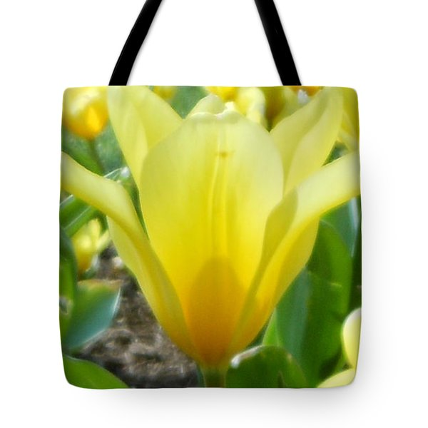 Daydreaming Of Yellow Tulips Tote Bag