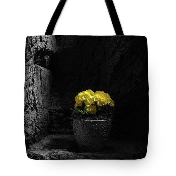 Tote Bag featuring the photograph Daylight Delight by Tom Mc Nemar