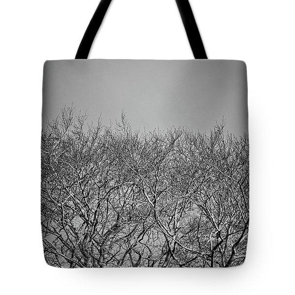 Daylight Moon Gazing Tote Bag