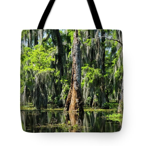 Daylight Swampmares Tote Bag