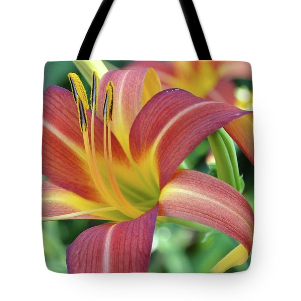 Daylilies At Daybreak Tote Bag by Rebecca Overton