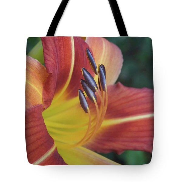 Daylilies Orange Tote Bag by Rebecca Overton