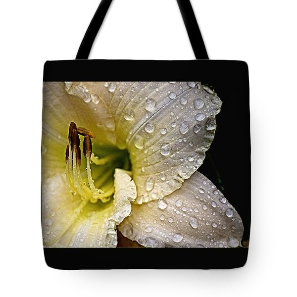 Daylilly 1 Tote Bag