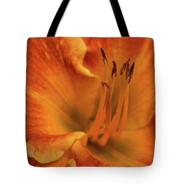 Tote Bag featuring the photograph Daylily Close-up by Sandy Keeton