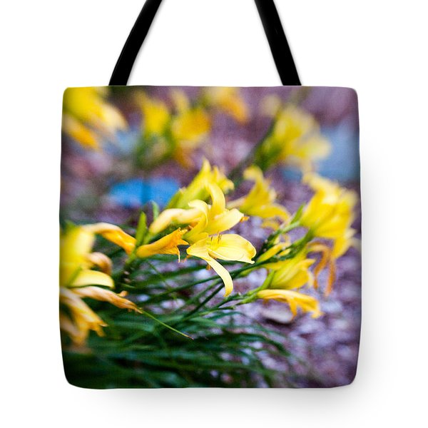 Tote Bag featuring the photograph Daylily by Erin Kohlenberg
