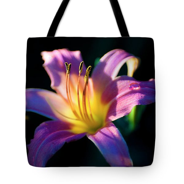 Daylily Glow Tote Bag by Tamyra Ayles