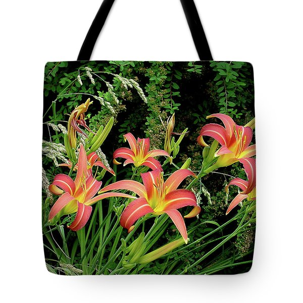 Daylily Grouping Tote Bag by Shirley Heyn