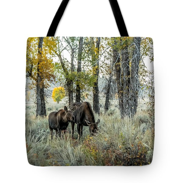 Tote Bag featuring the photograph Day's End At Gros Ventre by Yeates Photography