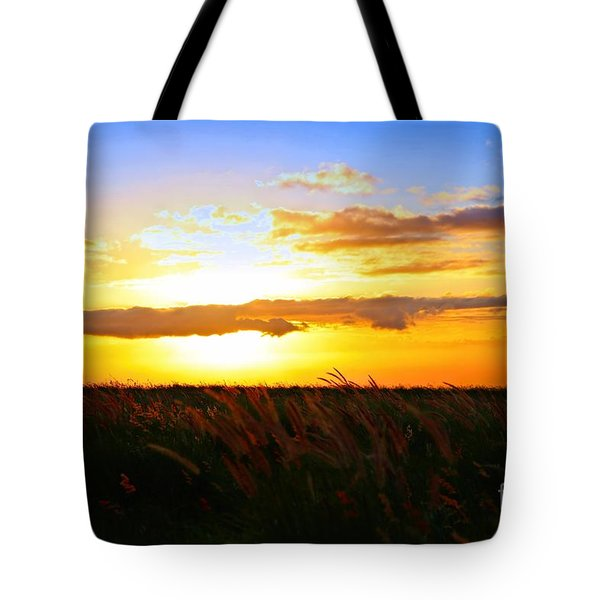 Tote Bag featuring the photograph Day's End by DJ Florek