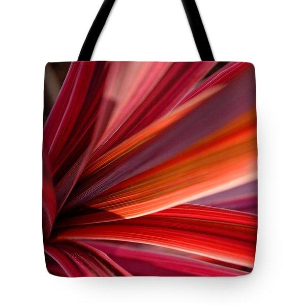Dazzler Tote Bag