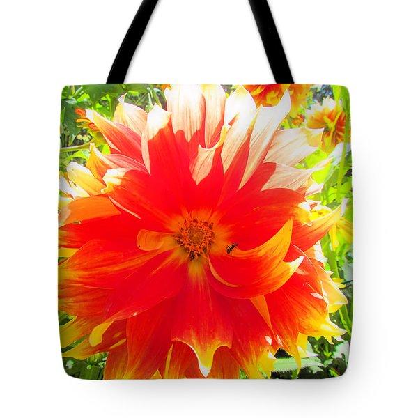 Dazzling Dahlia Tote Bag