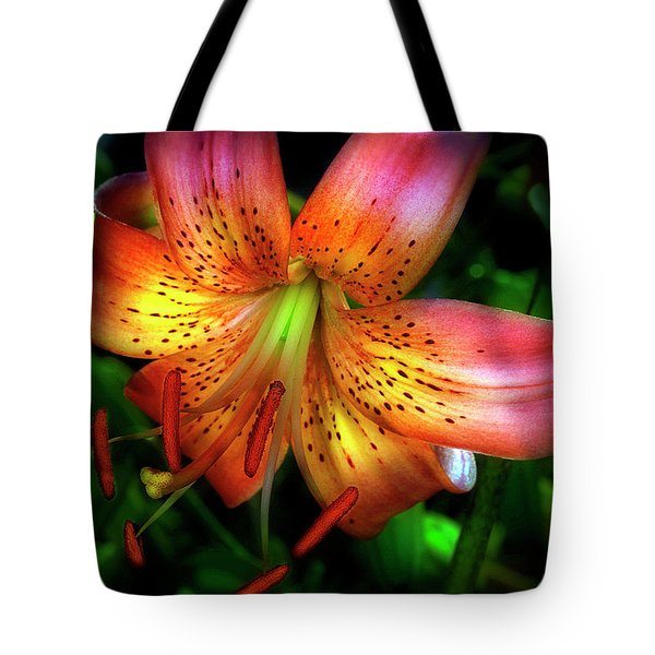 Dazzling Daylily  Tote Bag