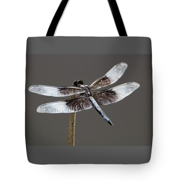 Dazzling Dragonfly Tote Bag