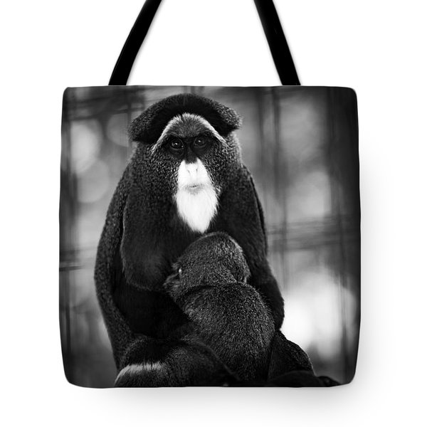 De Brazza's Monkey Tote Bag by Jason Moynihan