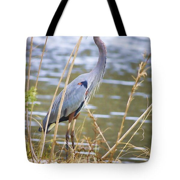 De Leon Springs Blue Tote Bag by Deborah Benoit