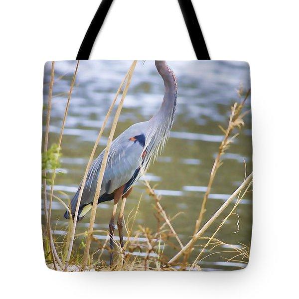 De Leon Springs Blue Tote Bag