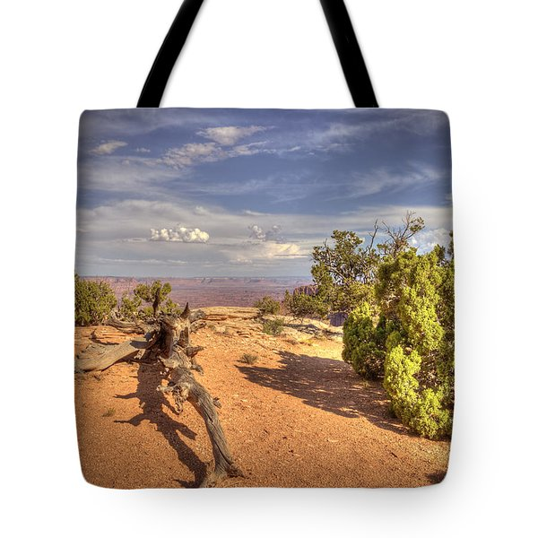 Dead Cedar Canyonlands Tote Bag
