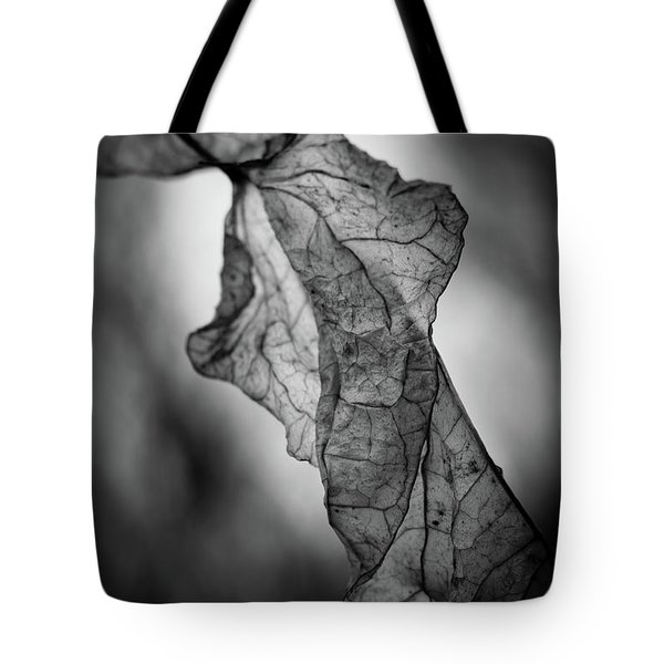 Tote Bag featuring the photograph Fragile Leaf Bw by Keith Smith