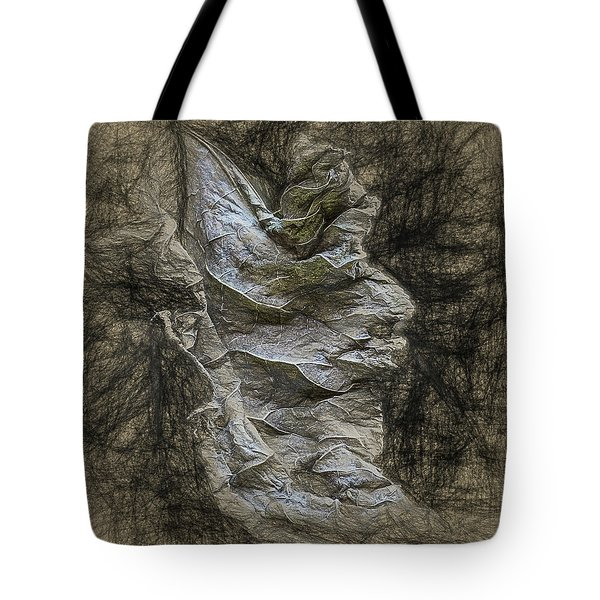 Tote Bag featuring the photograph Dead Leaf by Vladimir Kholostykh