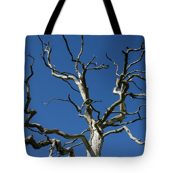 Dead Oak Tree Tote Bag