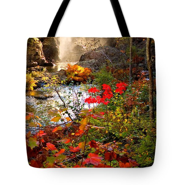 Dead River Falls Foreground Plus Mist 2509 Tote Bag by Michael Bessler