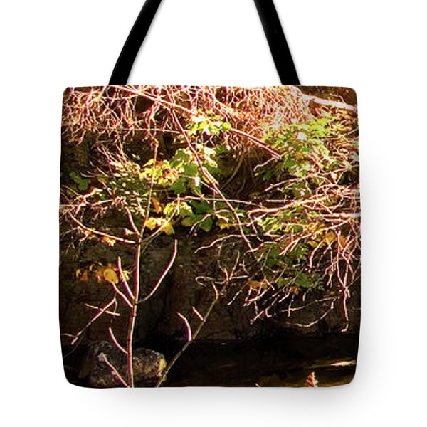 1 Of 6 Dead River Falls  Marquette Michigan Section Tote Bag