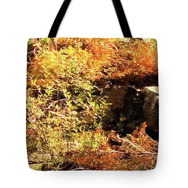 3 Of 6 Dead River Falls  Marquette Michigan Section Tote Bag