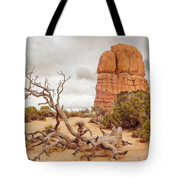Dead Tree Arches Tote Bag