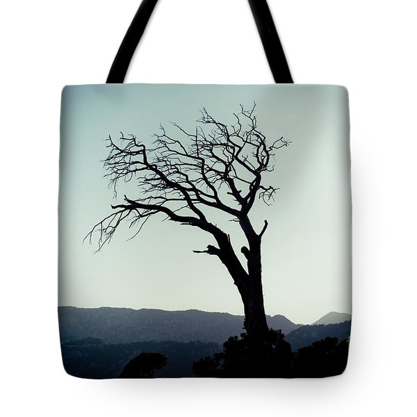 Dead Tree At The Sky Tote Bag