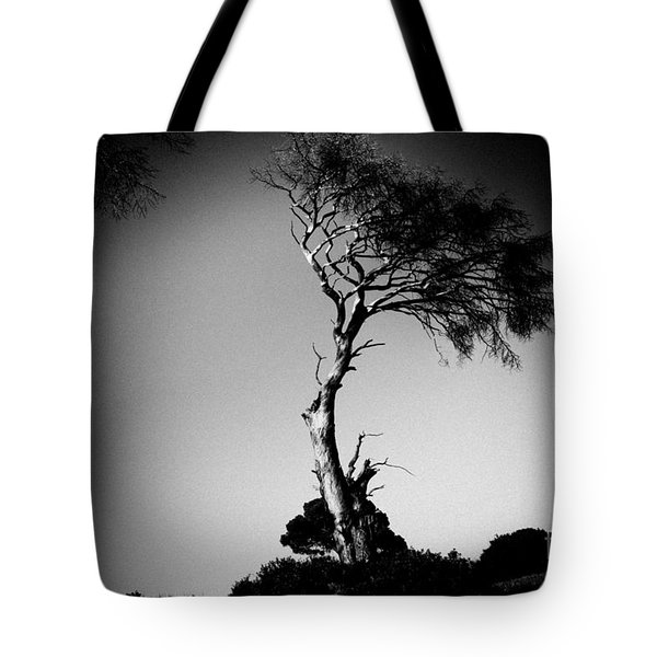 Dead Tree Bw Tote Bag