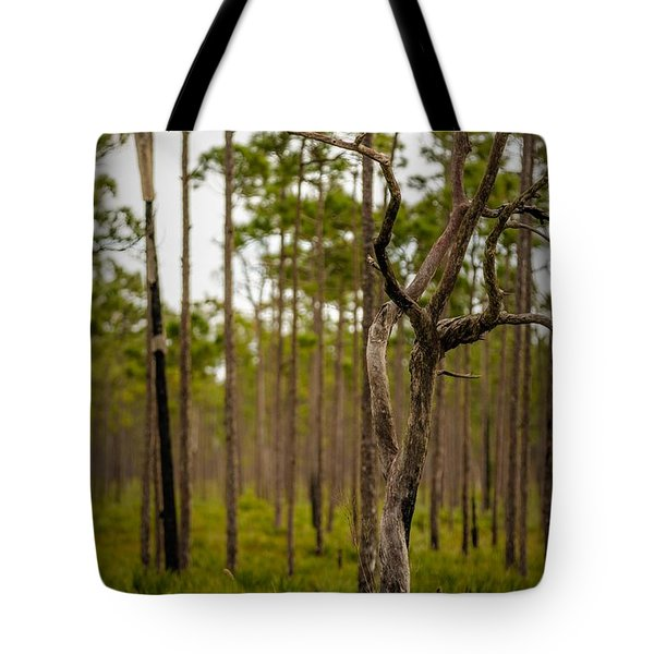 Dead Tree Tote Bag