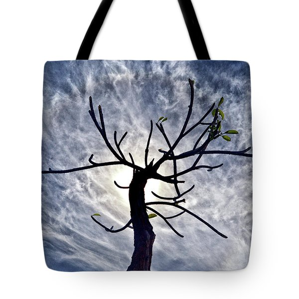 Dead Tree In St. Johns Antigua Tote Bag