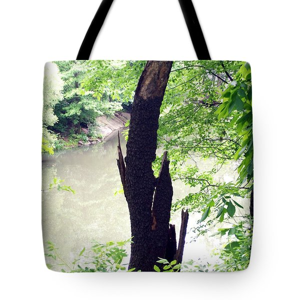 Tote Bag featuring the photograph Dead Tree by Lola Connelly