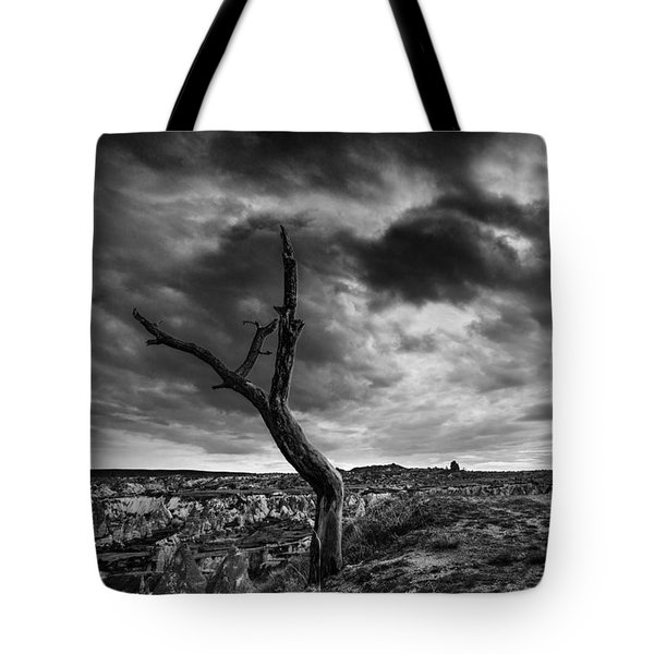 Dead Tree On Top Tote Bag by Yuri Santin