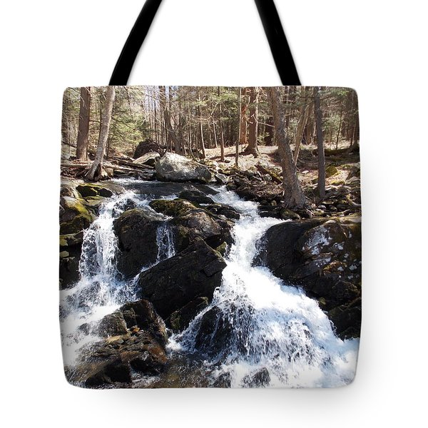 Deans Ravine Tote Bag by Catherine Gagne