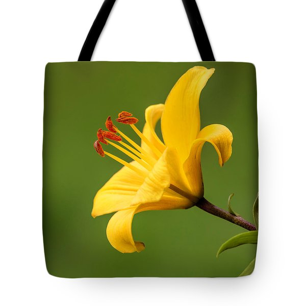 Tote Bag featuring the photograph Dear Lily by Roy McPeak