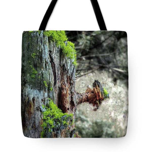 Death And Life Along The Path Tote Bag
