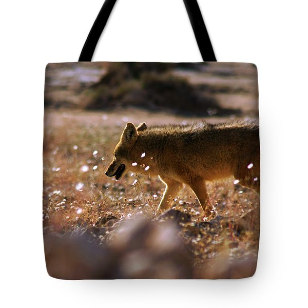 Death Valley Coyote And Flowers Tote Bag
